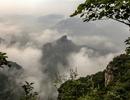 云雾仙境黄花岭