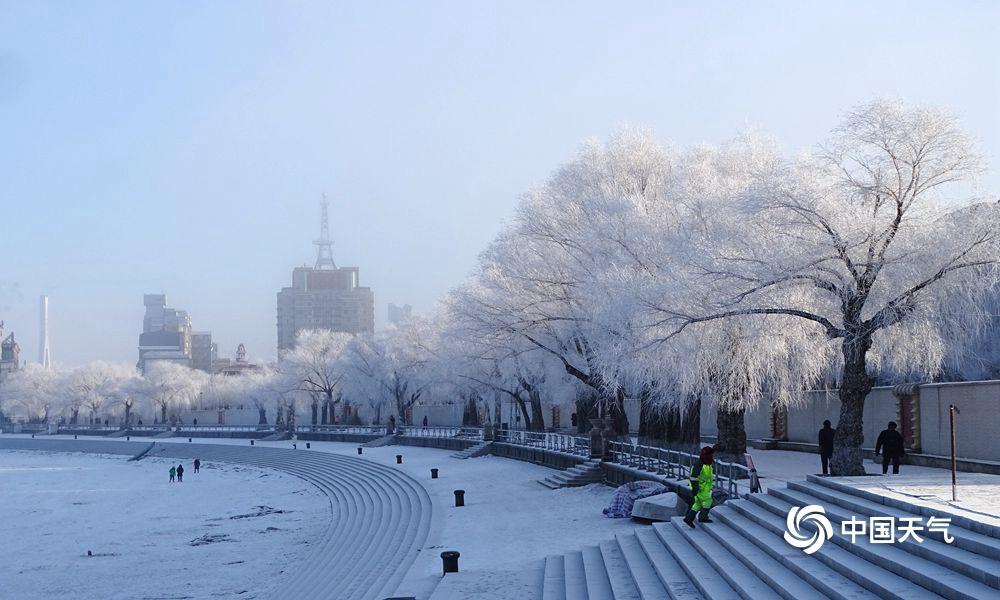 2019年1月2日,冰封雪锁后的哈尔滨松花江畔,迎来新年中始次雾凇景不悦目。在蔚蓝天空和阳光映照下,松花江沿岸玉树琼枝美轮美奂,似乎童话世界。(图文/吴胡荼)
