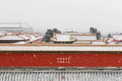故宫博物院热度不减 你爱上故宫美景了吗?