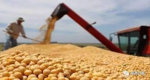 昨日,部分网站与微信平台发布的一则消息很受国内大豆、玉米、饲料、养殖业与市场投资人士关注,而且大家对此的看法存在较大分歧。