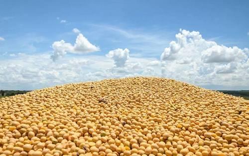 异日两年重心要放在农产品及期权