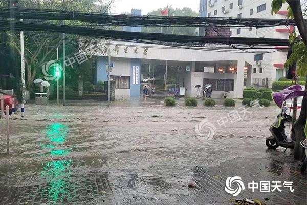 """强降雨""""席卷""""重庆 多地现大暴雨 今日局地仍有暴雨"""