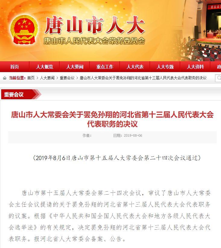 80后百亿富豪孙翔被举报双重国籍 人大代表职务被罢免