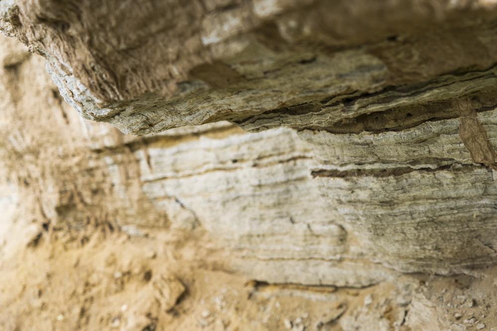 """内蒙古自治区乌审旗以萨拉乌苏河为轴,融合生态、文化、旅游、农业,打造""""一河三园""""(萨拉乌苏河、国家考古遗址公园、国家湿地公园、养生农业公园),这里桃红柳绿、碧水映日,风景如诗如画,宛如人间秘境。"""