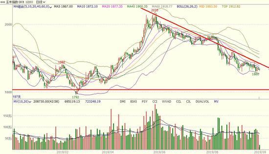 <b>长安期货:玉米C2001期货交易策略</b>