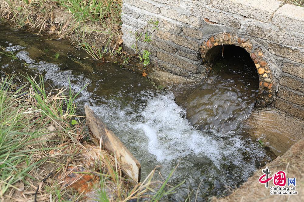 """按照""""源头控制——中途拦截——末端处理+水体生态修复""""的理念,长沙市望城区靖港镇复胜村通过建设成本低、维护易、效果好的""""三池一地"""",同步实施退耕还湿(还草)、水系连通等工程措施和生物技术,构建治水、治厕、治垃圾的""""三治同步""""治理体系,从而达到降低区域水体的污染,改善区域人居生态环境的目标。中国网记者 伦晓璇 摄"""