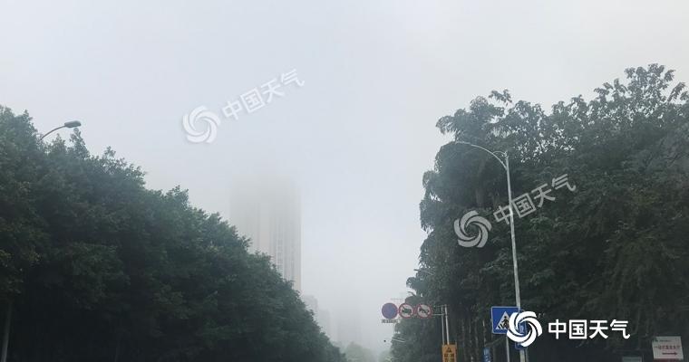 重庆多地大雾阻交通 明后天能见度转好昼夜温差大