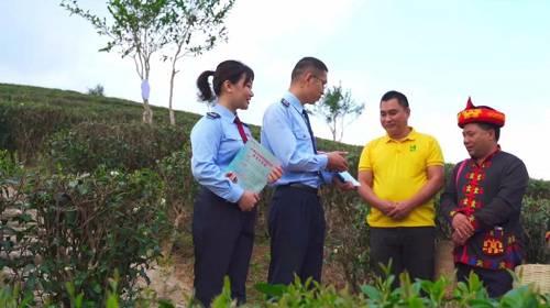 """五指山全年暖热,日照充足,发展茶叶种植的自然条件得天独厚,有为""""天赐茶园""""之称。在此基础上,椰仙科技的种茶技术使村里的茶品有了质和量的飞跃,为贫困户真正打开了致富门。现如今,毛脑村全村56户209人已全部脱贫,全村茶园面积达1400余亩,药材500余亩,全年产值超600万元。"""