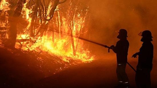 """山火肆虐!经济学家大砍澳洲GDP预期澳元也将被""""烧为灰烬""""?"""