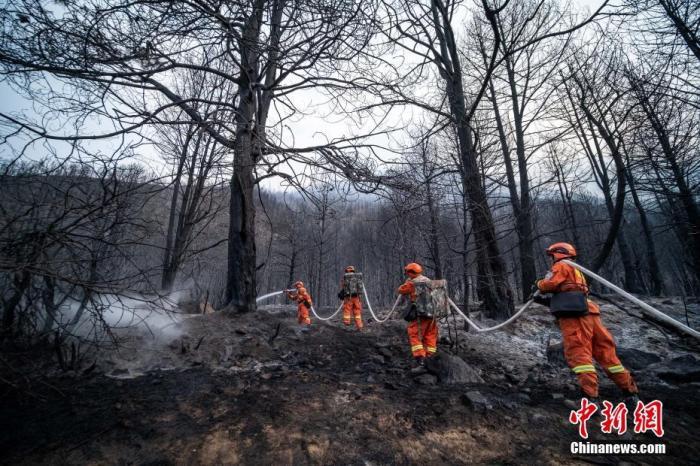 西藏林芝山火得到有效控制
