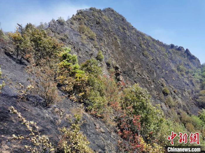 贵州妥乐古银杏景区发生山火 山体明火已扑灭