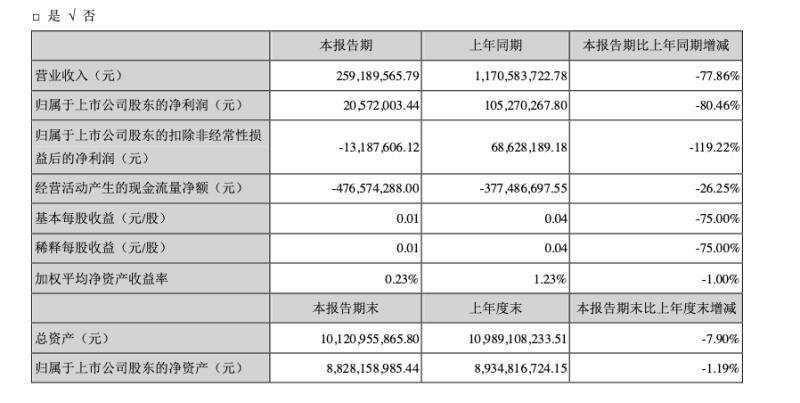 光线传媒:上半年营收2.59亿元,同比下降超七成