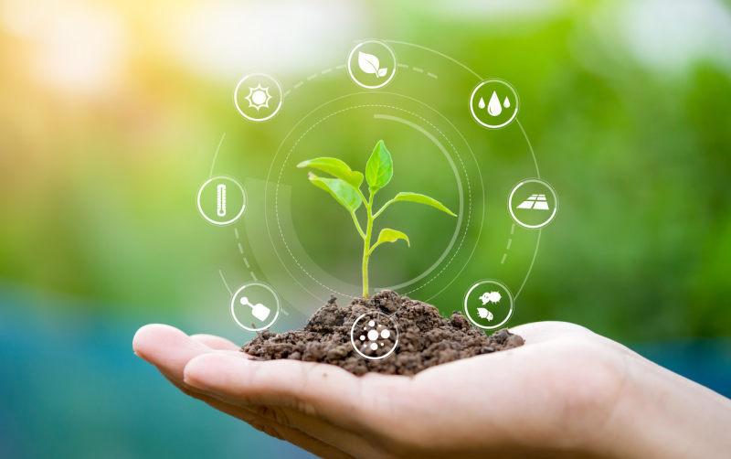 筹建|中国农业再保险获批筹建,国寿财险、太保产险等5家险企参与设立