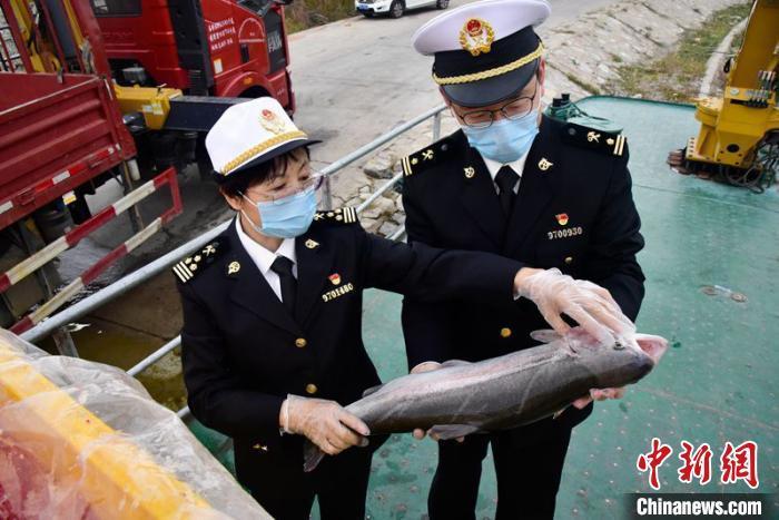 青海高原冷水鱼前8个月出口额同比增长140%