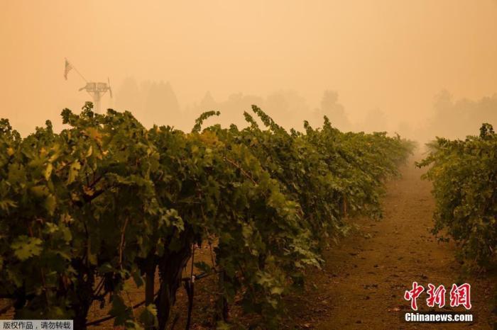 美国加州创纪录山火继续蔓延 已造成30人丧生