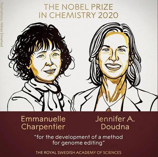 """2020年诺贝尔化学奖,花落她和她!一文看懂""""基因剪刀""""是什么?(视频)"""