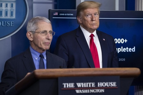 AP:特朗普表示将在大选后炮打传染病权威福奇并开除他 目前是隐忍没动手