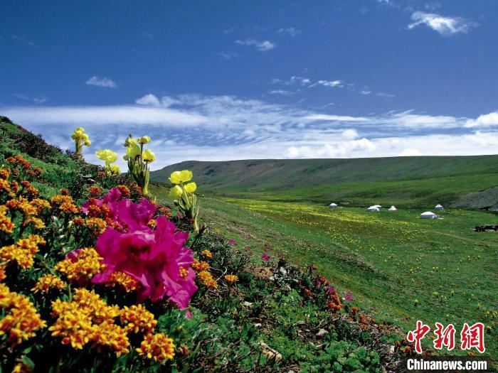 """三江源牧民捧起""""生态饭碗"""":绿水青山就是金山银山"""