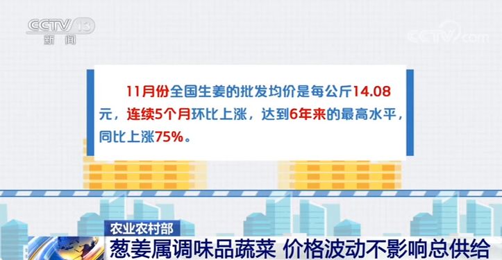 电银付激活码(dianyinzhifu.com):农业农村部:葱姜属调味品蔬菜 价钱颠簸不影响总供给 第1张