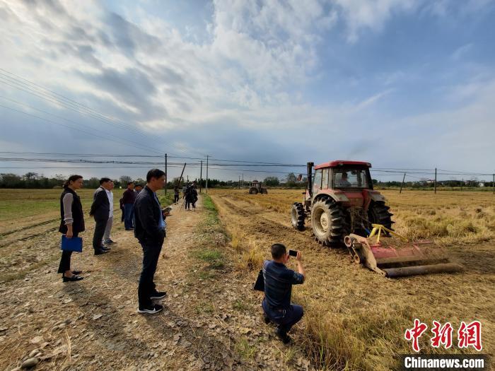 江西南昌常年秸秆综合利用总量163万吨 利用率超91%