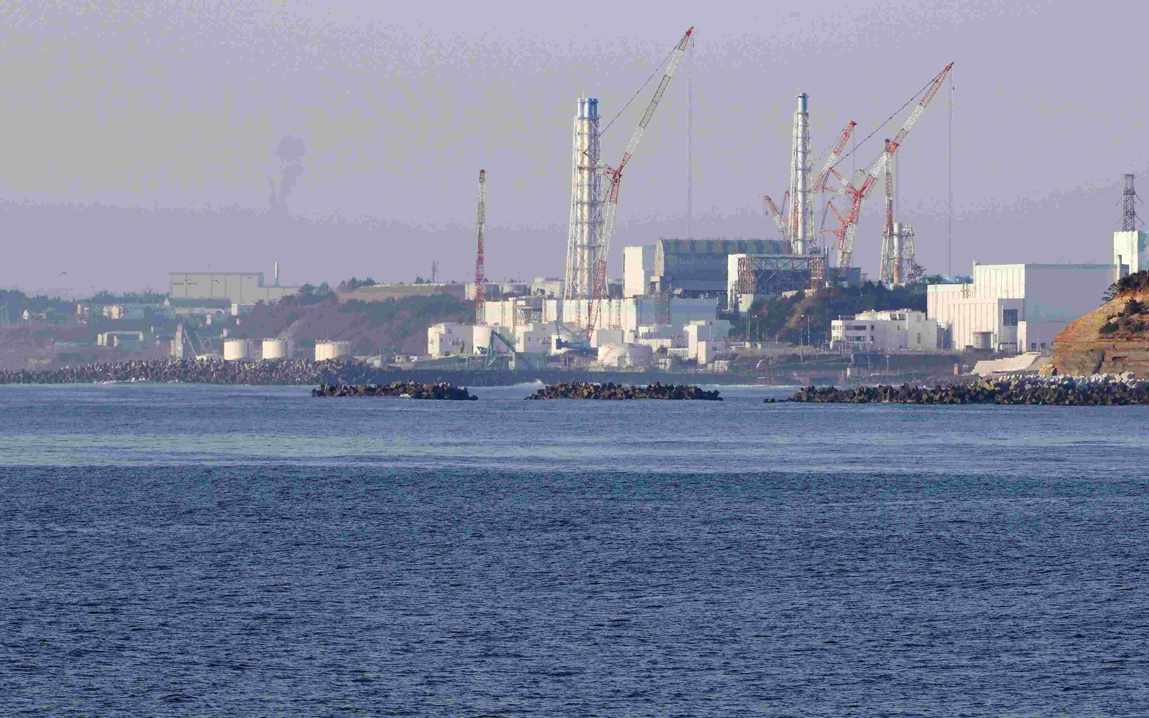 赵立坚:请日本政客用核废水做饭|日本政客这么做有何居心?