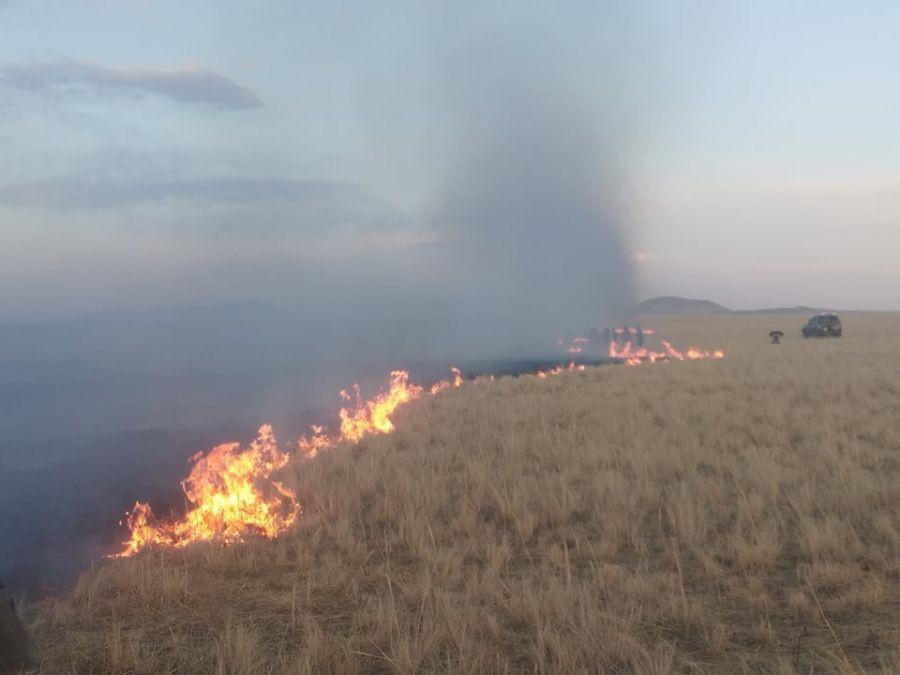 蒙古国草原火灾蔓延至中国境内