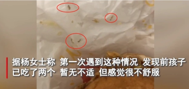 女子吃汉堡发现活虫 麦当劳回应说了什么?山西一女子吃汉堡时发现大量活虫具体情况