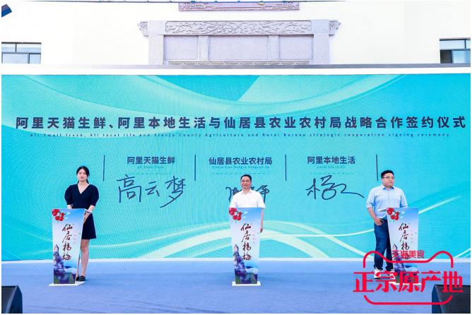 仙居杨梅产业数字化管理再升级,一颗杨梅造就大产业