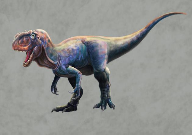 陕西延安发现侏罗纪肉食龙足迹推测体长可达8米