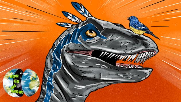 为什么说鸟类就是恐龙?