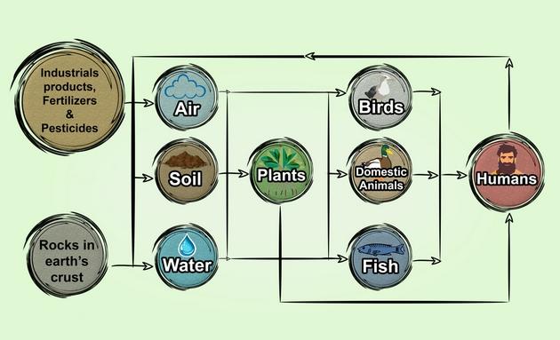 微生物如何处理环境中的有毒重金属?