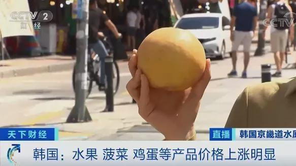 韩国一个梨涨至20多元 鸡蛋价格大涨超50%:网友直呼这物价太高