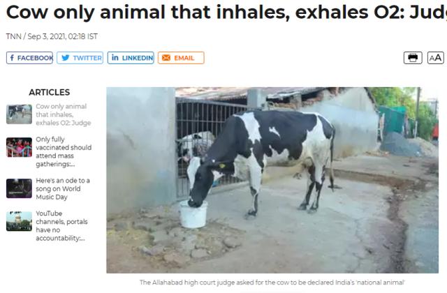 """印度法官""""神裁决"""":牛吸入呼出的都是氧气,应定为""""国家动物"""""""