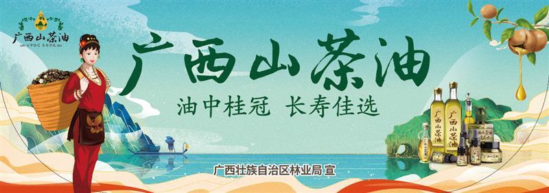 广西:小小山茶油,绘就乡村振兴大图景